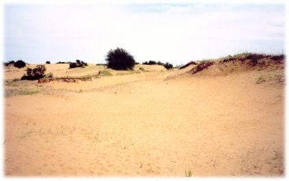 Elbow Sand Hills photo