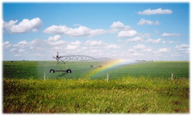 Rolling Irrigation System photo